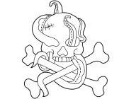 Pirate Warriors Skull