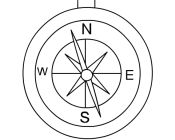 Pirates Compass