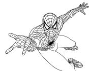 Spiderman Attacking